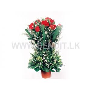 Tall Pot Of 12 Red Roses