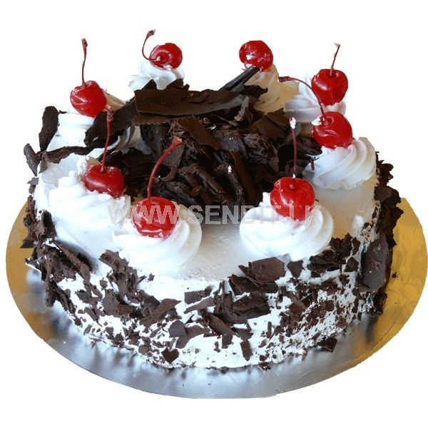 Shop Online For Special Birthday Cakes In Sri Lanka Sendit