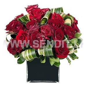 Twenty Red Roses in a Glass Vase